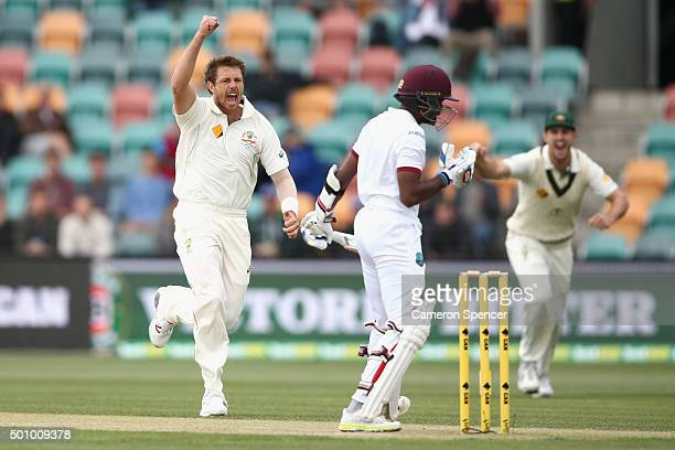 James Pattinson of Australia celebrates dismissing Rajendra Chandrika of the West Indies during day three of the First Test match between Australia...