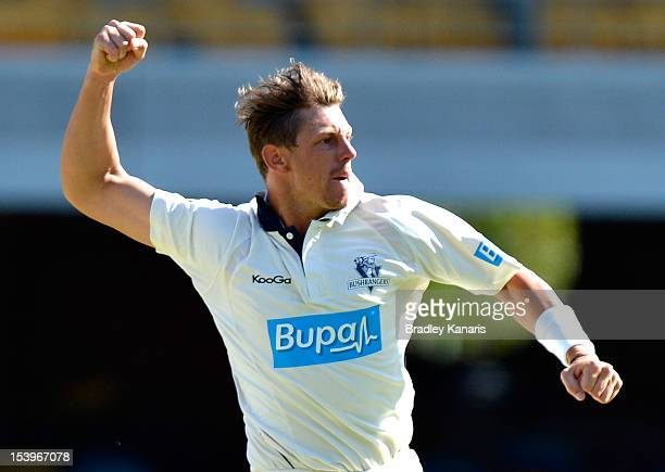 James Pattinson of the Bushrangers celebrates after taking the wicket of Wade Townsend of the Bulls during the Sheffield Shield match between the...