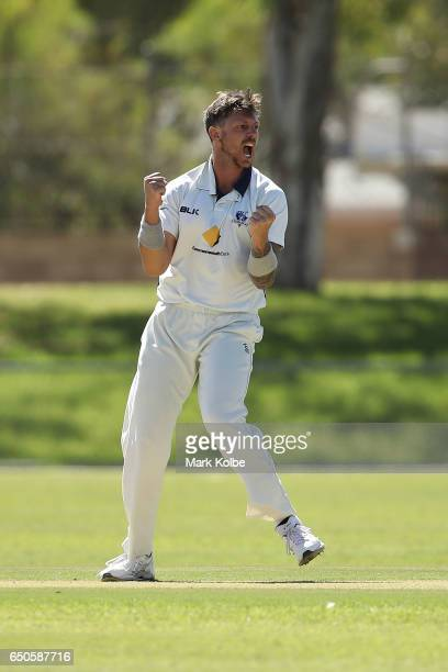 James Pattinson of the Bushrangers celebrates taking the wicket of Cameron Bancroft of the Warriors during the Sheffield Shield match between...