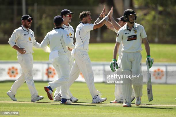 James Pattinson of the Bushrangers celebrates with his team mates after taking the wicket of Cameron Bancroft of the Warriors during the Sheffield...