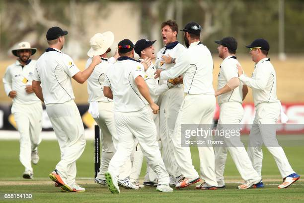 James Pattinson of the Bushrangers celebrates with team mates after claiming the wicket of John Dalton of the Redbacks during the Sheffield Shield...