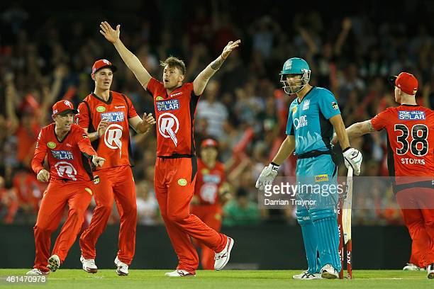 James Pattinson of the Melbourne Renegades celebrate the wicket of Joe Burns of the Brisbane Heat during the BIg Bash League match between the...