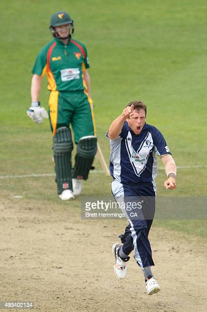 James Pattinson of Victoria celebrates after taking the wicket of Ben Dunk of Tasmania during the Matador BBQs One Day Cup match between Tasmania and...