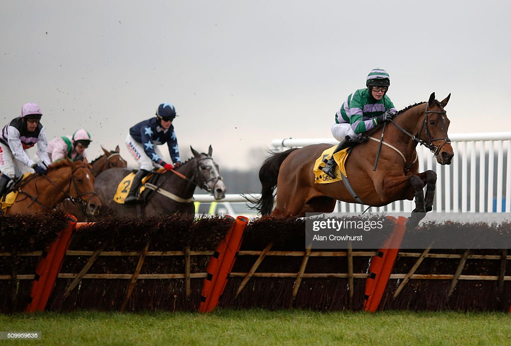 James Slevin riding Count Guido Deiro lead all the way to win The Betfair Acca Edge handicap Hurdle Race at Newbury racecourse on February 13, 2016 in Newbury, England.