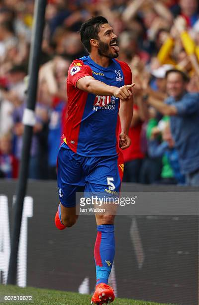 James Tomkins of Crystal Palace celebrates scoring his sides first goal during the Premier League match between Crystal Palace and Stoke City at...