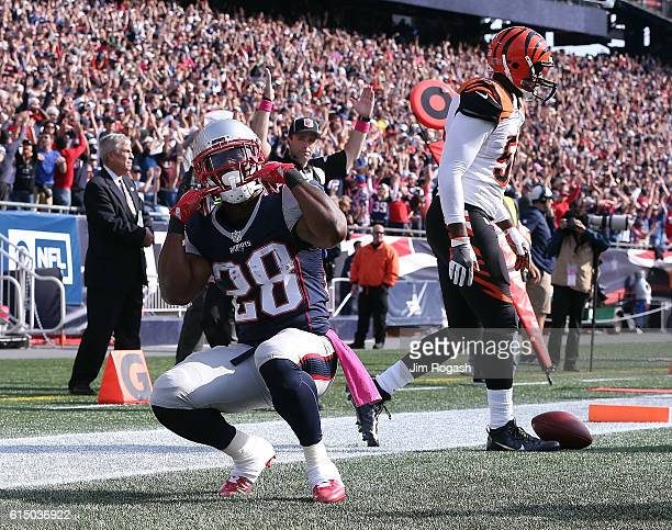 James White of the New England Patriots reacts after his touchdown against the Cincinnati Bengals in the second quarter at Gillette Stadium on...