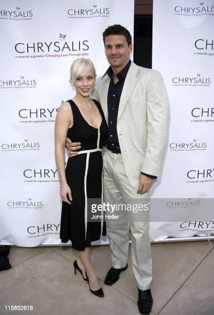 Jamie Bergman and David Boreanaz during Chrysalis' Fourth Annual Butterfly Ball at Private Residence in Bel Air California United States