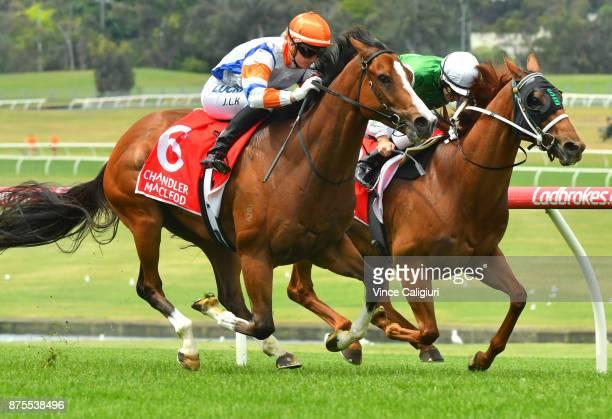 Jamie Kah riding Dollar for Dollar defeats Luke Currie riding Hellova Street in Race 5 during Melbourne Racing at Sandown Hillside on November 18...