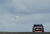 Jamie Whincup drives the Red Bull Racing Australia Holden during Race 32 for the Phillip Island SuperSprint which is part of the V8 Supercar...