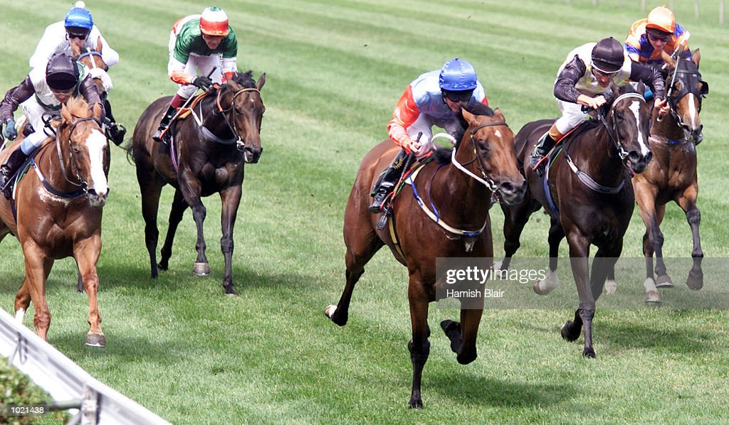 Mensa, ridden by P Mertens (centre) on the way to victory, from Storm Tossed, ridden by D Nikolic and Card Queen ridden by Damien Oliver in the Courtyard Surfers Paradise, Race 6, at Flemington Racecourse, Melbourne, Australia Mandatory Credit: Hamish Blair/ALLSPORT