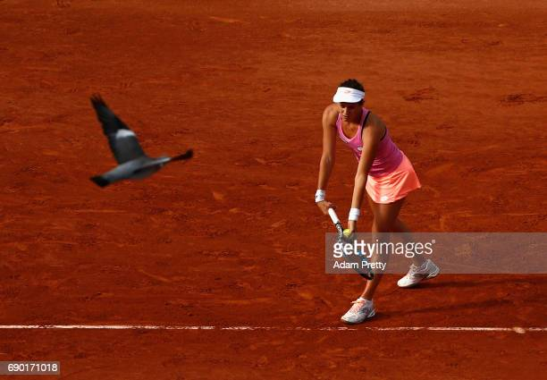 Jana Cepelova of Slovakia serves whilst a bird flys past during the ladies singles first round match against Simona Halep of Romania on day three of...