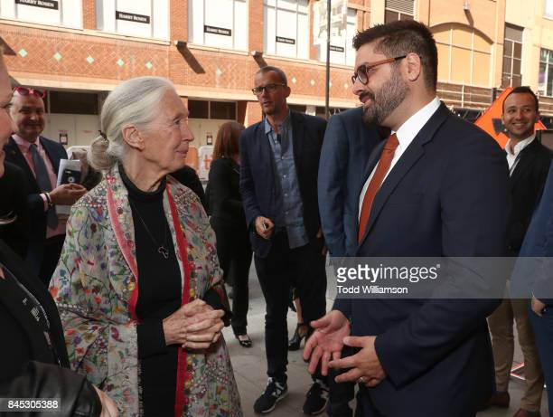 Jane Goodall and National Geographic's President Original Programming Production Tim Pastore attend National Geographic's 'Jane' TIFF Premiere at the...