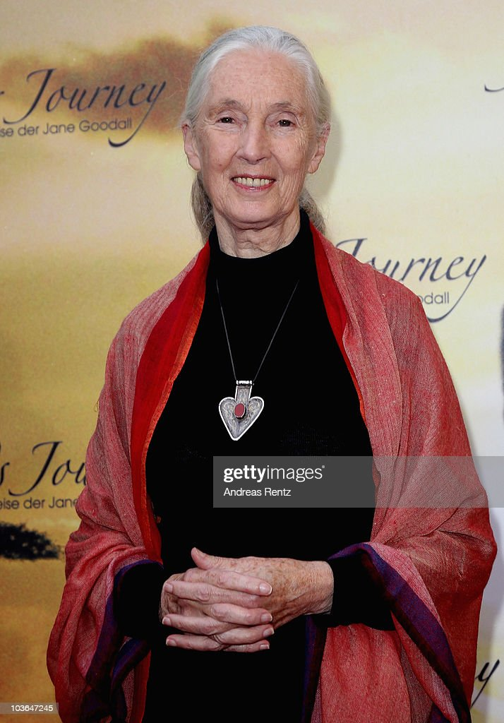 Jane Goodall arrives for Jane's Journey (Die Lebensreise der Jane Goodall) Germany premiere at Astor Film Lounge on August 26, 2010 in Berlin, Germany.