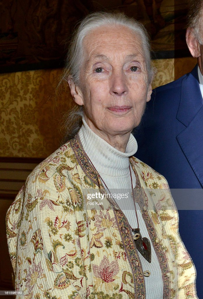 <a gi-track='captionPersonalityLinkClicked' href=/galleries/search?phrase=Jane+Goodall&family=editorial&specificpeople=224034 ng-click='$event.stopPropagation()'>Jane Goodall</a> attends the Rallye Aicha des Gazelles du Maroc' 2013 - Press Conference at Palais du Luxembourg on February 12, 2013 in Paris, France.