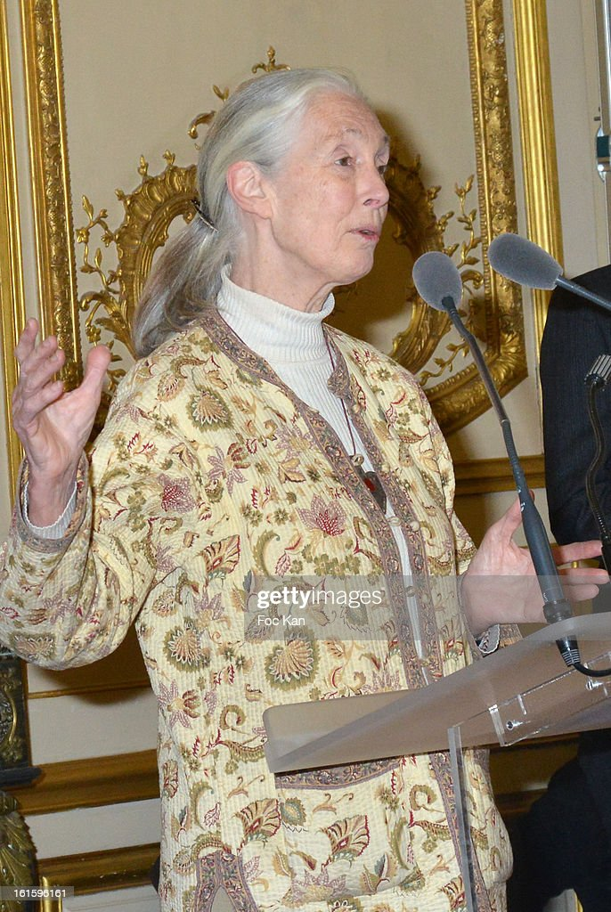 Jane Goodall attends the Rallye Aicha des Gazelles du Maroc' 2013 - Press Conference at Palais du Luxembourg on February 12, 2013 in Paris, France.