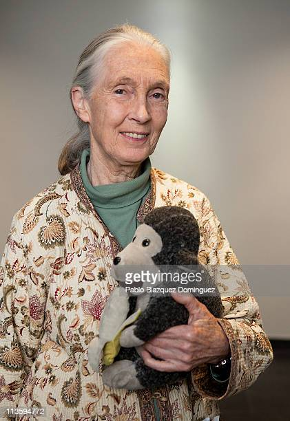 Jane Goodall poses for a portrait with Mr H her stuffed monkey during the presentation of 'Jane's Journey Film' at Sala Berlanga on April 27 2011 in...