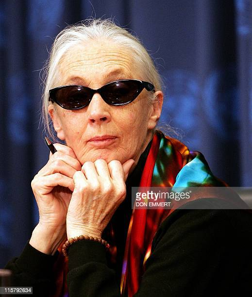 Jane Goodall UN Messenger of Peace takes questions during a news conference 20 April 2005 at the United Nations headquarters in New York City AFP...