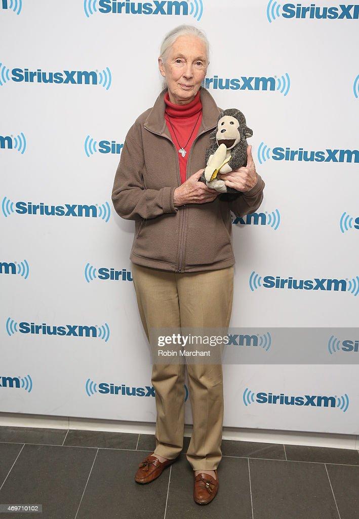 Jane Goodall visits at SiriusXM Studios on April 14, 2015 in New York City.