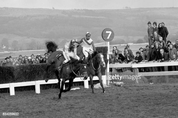 Jane Samuel's Captain Christy with Bobby Beasley in the saddle just heads The Dikler ridden by Ron Barry over the last fence before going on to win...