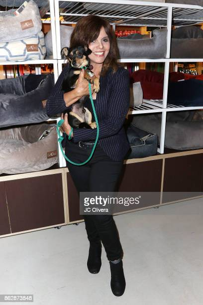 Jane VelezMitchell attends a press conference celebrating Calfornia Governor Jerry Brown signing California assembly Bill 485 The Pet Rescue and...