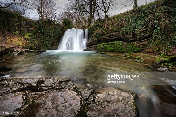 Janet's Foss waterfall, Yorkshire Dales, UK