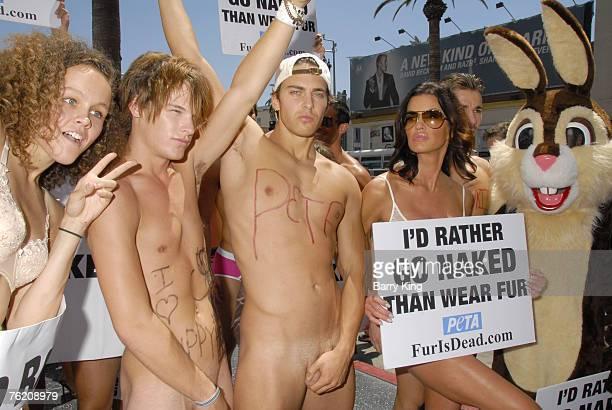 janice dickinson models nude