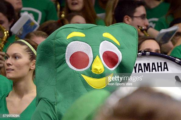 A Notre Dame Fighting Irish fan dresses up as Gumby in action during a game between the Duke Blue Devils and the Notre Dame Fighting Irish at the...