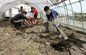 SOMA Japan A boy from Kanazawa Ishikawa Prefecture joins other volunteers to remove mud from a plastic greenhouse in Soma Fukushima Prefecture on...