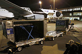 NARITA Japan A pair of giant pandas are transported in containers after arriving at Narita airport east of Tokyo in the evening of Feb 21 from China...