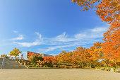 Japan autumn , Beautiful autumn leaves of park ,Nagano Prefecture,Japan.