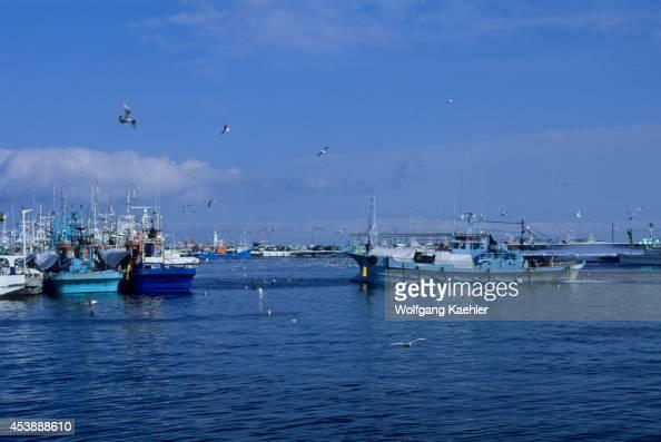 Japan Hokkaido Island Shiretoko Peninsula Rausu Harbor Scene Fishing Boats