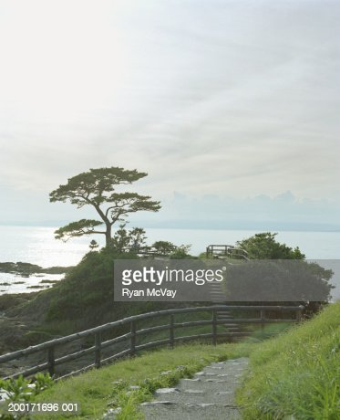 Japan, Honshu, Fukui Prefecture, Tateishi-misaki, park beside sea : Stock Photo