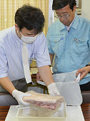 NAGOYA Japan Local public health officials in Aichi Prefecture place beef in which radioactive cesium has been detected in a bag on July 15 2011...