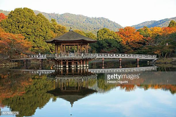 Japan, Nara, Nara Park