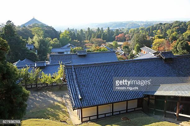 Japan, Nara, Todaiji Temple