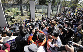 TOKYO Japan People flock to watch two giant pandas which were shown to the public for the first time after arriving from China in February at Tokyo's...