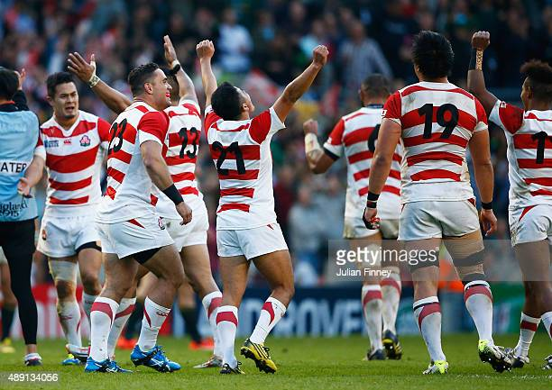 Japan players celebrate their surprise victory during the 2015 Rugby World Cup Pool B match between South Africa and Japan at the Brighton Community...