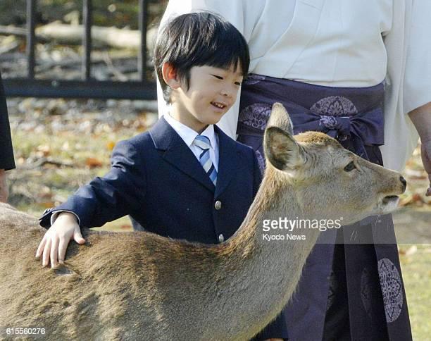 NARA Japan Prince Hisahito strokes a deer at Nara Park in Nara City on Nov 8 2012 The 6yearold prince visited the park with his parents Prince...
