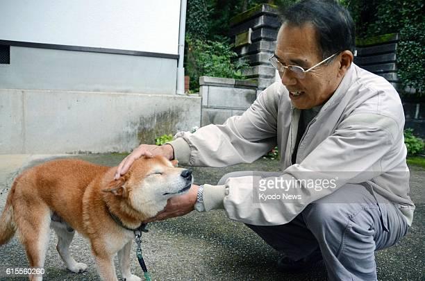 MATSUYAMA Japan Seiji Taniguchi operator of 'Sankyu Bokujo' for abandoned animals bends down to pet a male Japanese Shiba dog named Haru at the farm...