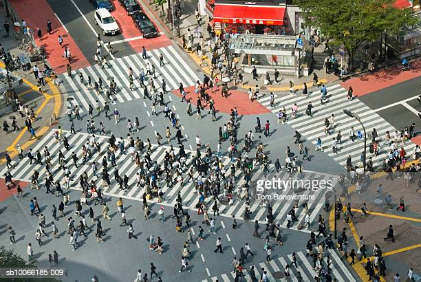 Japan, Tokyo, pedestrians on Shibuya crossing, elevated view