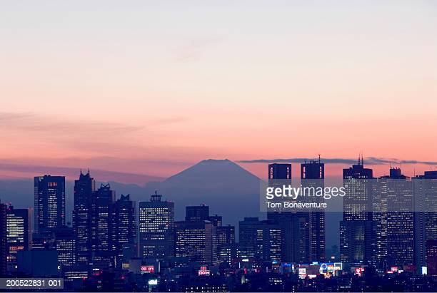 Japan, Tokyo, Shinjuku District, skyline, elevated view, dusk