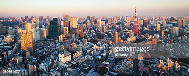 Japan, Tokyo, Skyline with Tokyo Tower