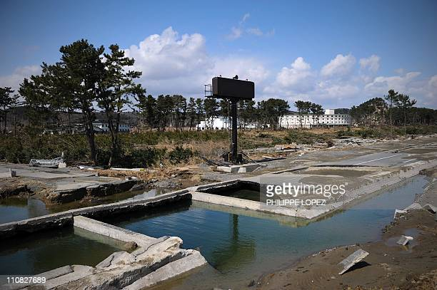 JapandisastertsunamitourismFOCUS by Huw GriffithThis photo taken on March 23 2011 shows the coastline road lined with pine trees destroyed after it...