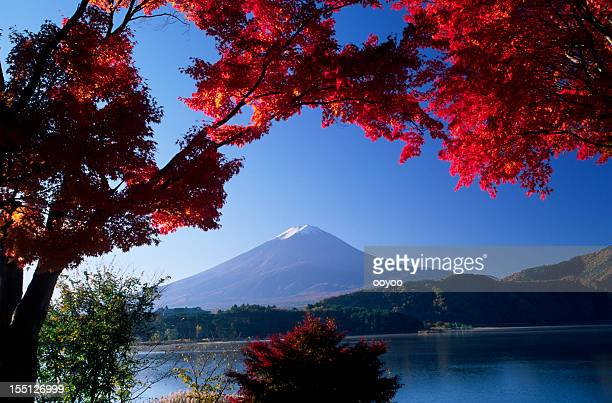 Japanese Autumn Landscape