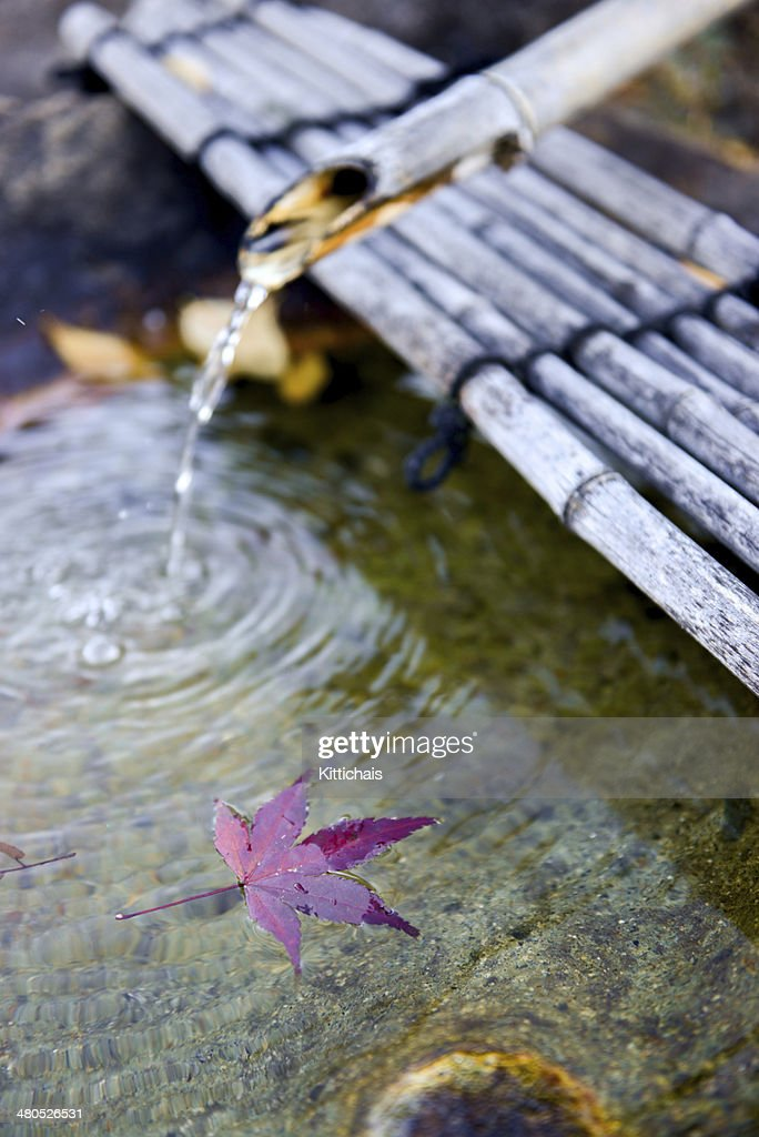 Japanese Bamboo fountain with Autumn Red Maple Leaf. : Stock Photo