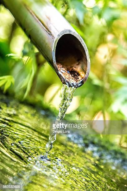 Japanese bamboo water fountain