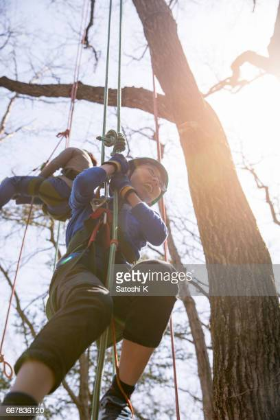 Japanese boy and girl climbing up tree with ropes