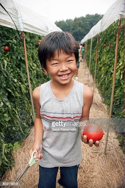 Japanische junge hält eine Tomate