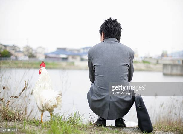 Japanese businessman sitting with hen by pond