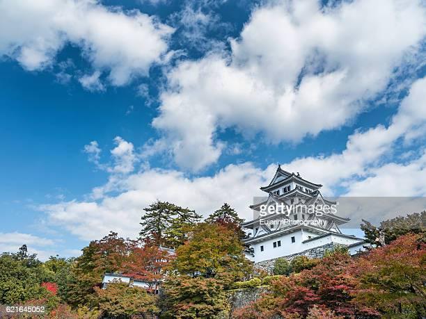 Japanese castle on an autumn day